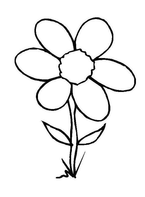 577x784 Flower Embedded In The Soil Coloring Pages Pre K Color Pages