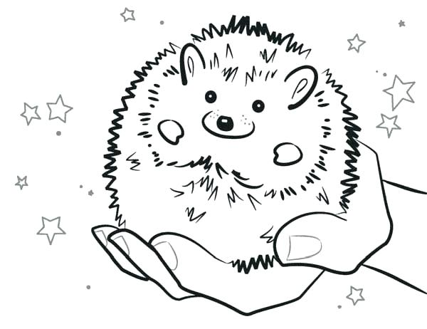 600x462 Sonic The Hedgehog Coloring Pages Free Sonic Hedgehog Coloring