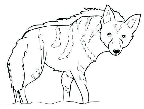 480x364 Africa Map Coloring Pages Coloring Page Coloring Page Map South