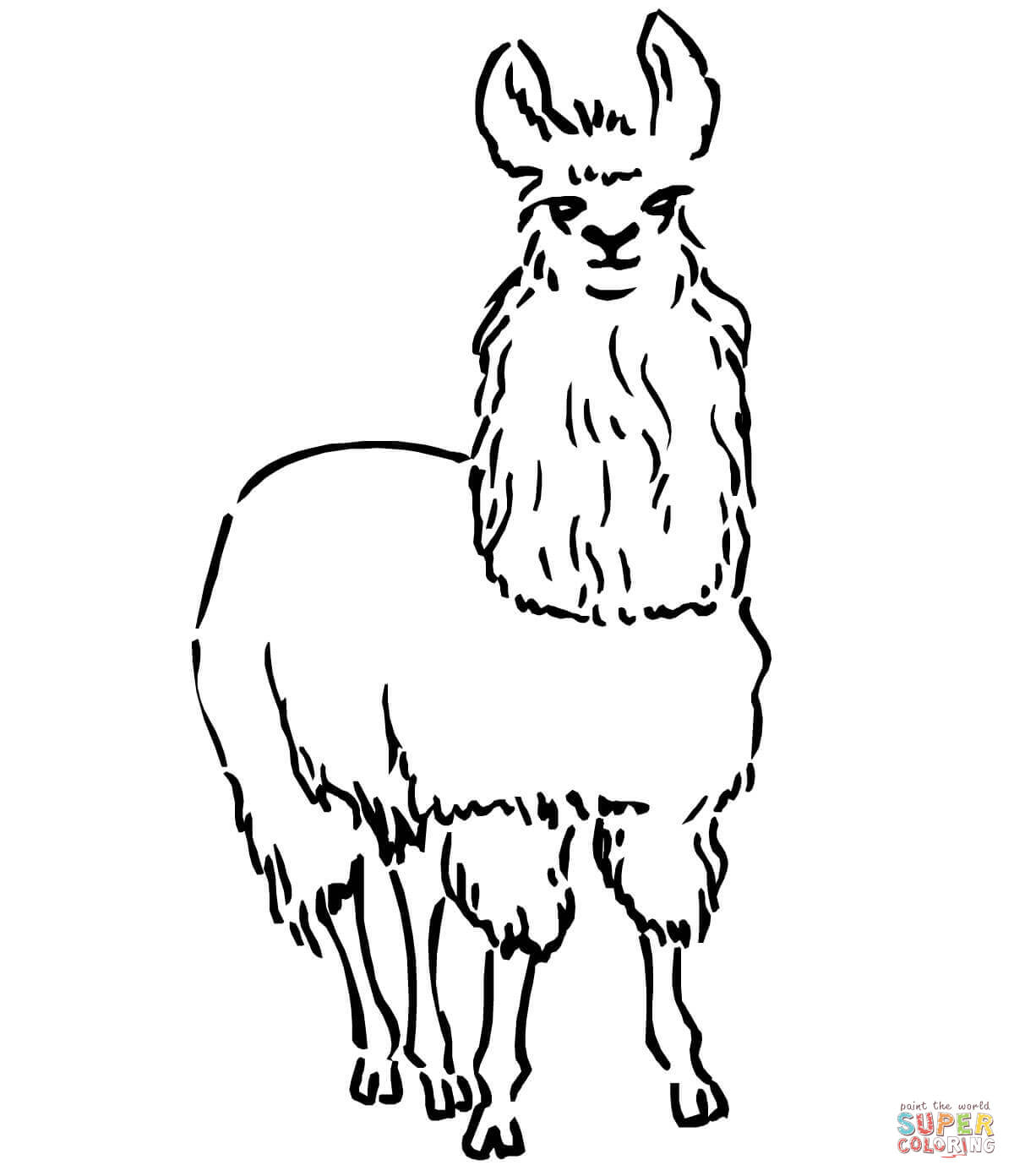 1200x1392 South American Llama Coloring Page