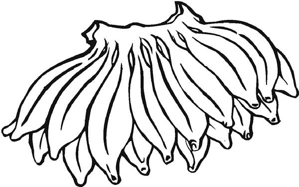 600x377 Banana From South America Coloring Page Coloring Sun