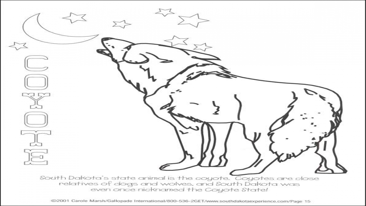 1280x720 South Dakota Coloring Sheet State Books From Gallopade Book
