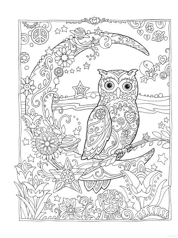 575x767 Owl Owls Crescent Moon Flowers Peace Space Coloring Pages