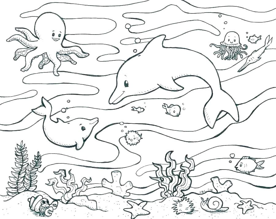 900x717 Marine Coloring Page Biology Coloring Pages Marine Biology