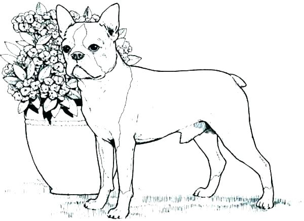 Sparky Coloring Pages