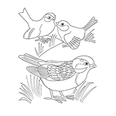 230x230 Cute Sparrow Coloring Pages For Your Little One