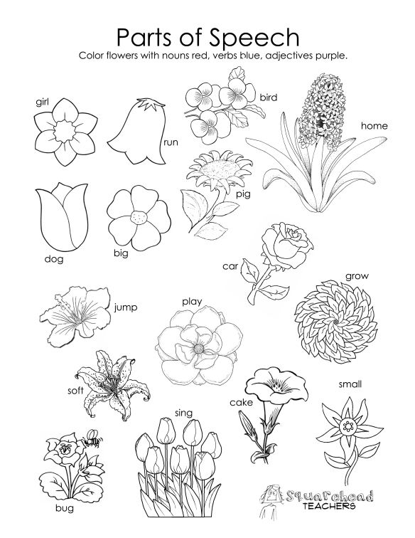 584x756 Parts Of Speech Coloring Page Spring For Kids