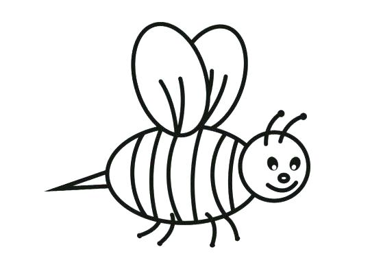 540x405 Bee Coloring Page Nieces Nephews Bees Parts Of Bee Colouring