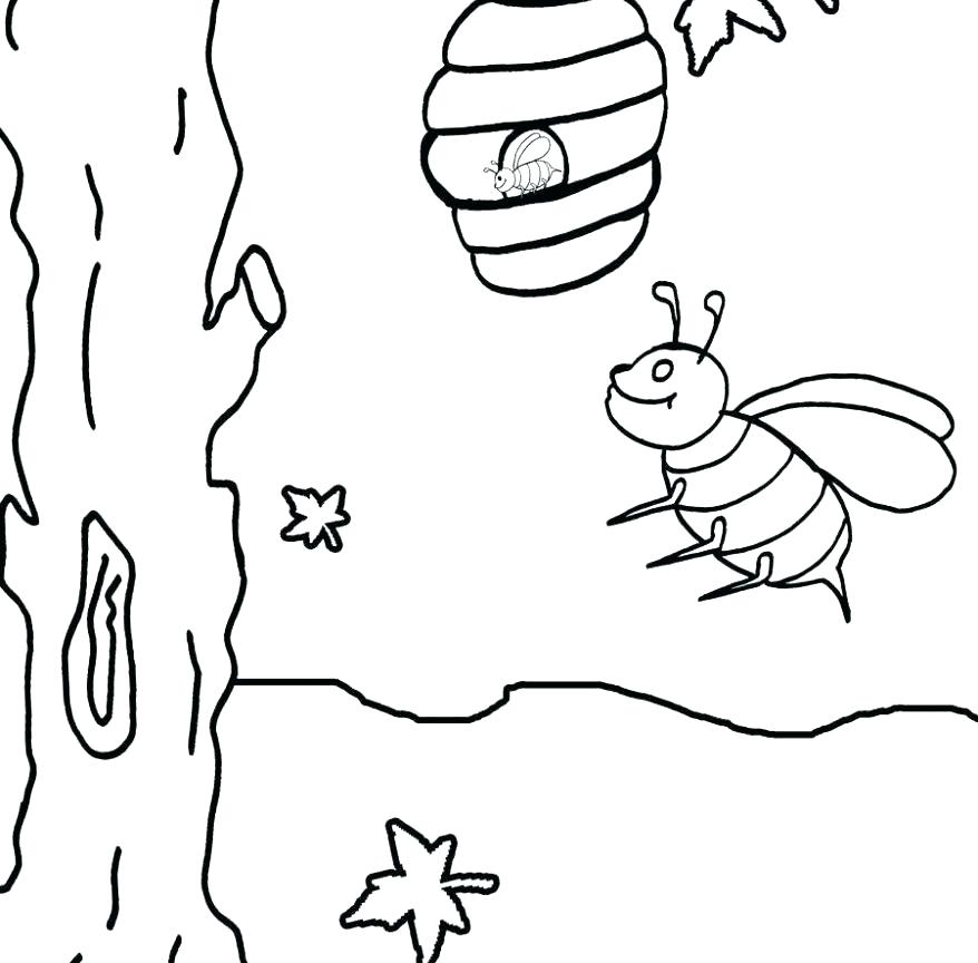878x864 Bees Coloring Pages Bumble Bee Coloring Pages Bee Coloring Sheet