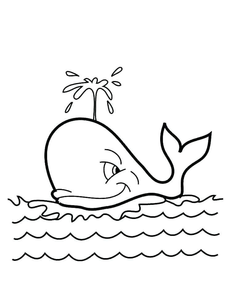 750x1000 Shark Color Pages Whale Shark Coloring Page Whale Coloring Page