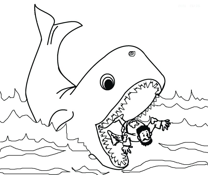 850x716 Whale Coloring Pages The Whale Coloring Pages Printable