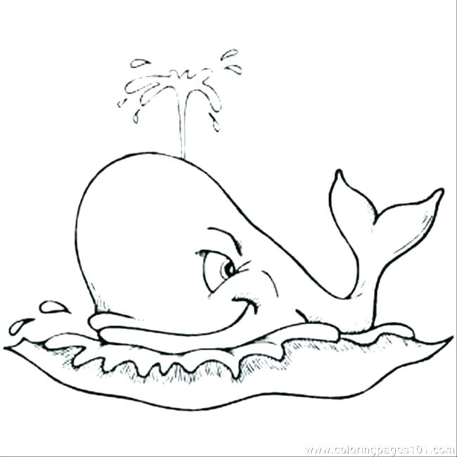 650x650 Whale Coloring Pages Coloring Page And The Big Fish Coloring Page