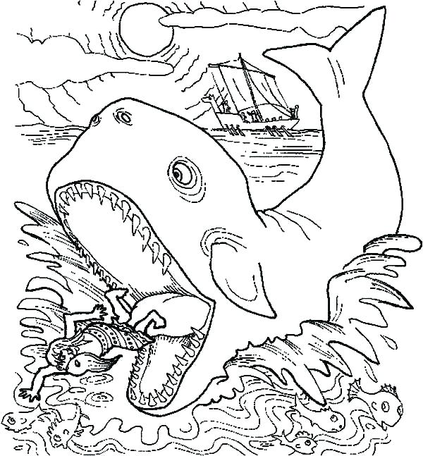 600x647 Whale Coloring Page