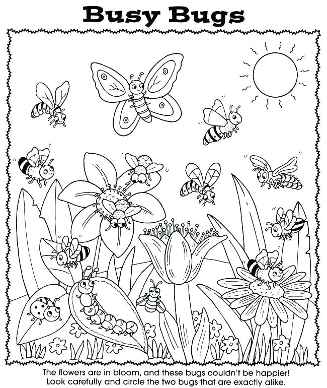 650x770 The Very Busy Spider Coloring Pages Spider Web Coloring Spider