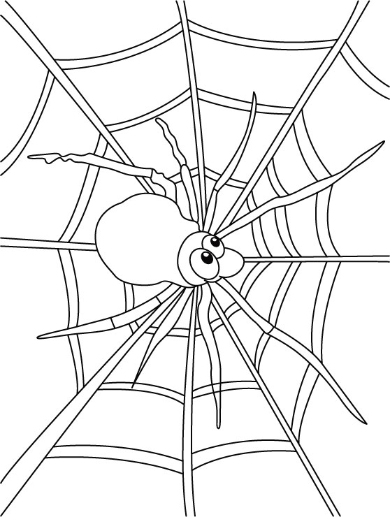 558x740 Pleasant Design Spider Web Coloring Pages To Print For Kids