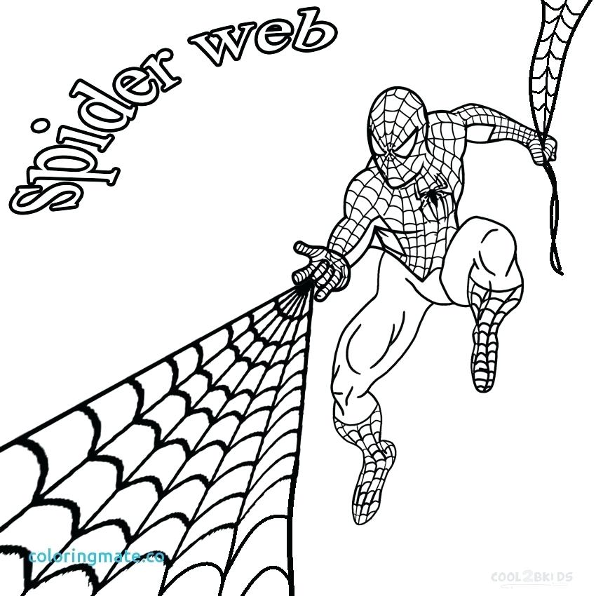 850x850 Spider Coloring Page Spider Web Coloring Page Unique Free Animated