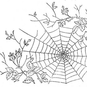 300x300 Spider Web Coloring Page