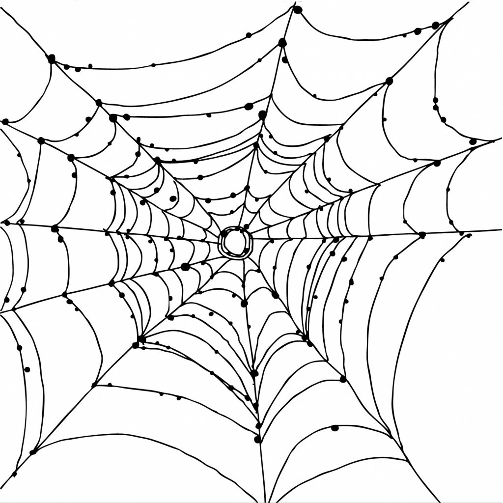 1024x1024 Best Spider Web Coloring Page