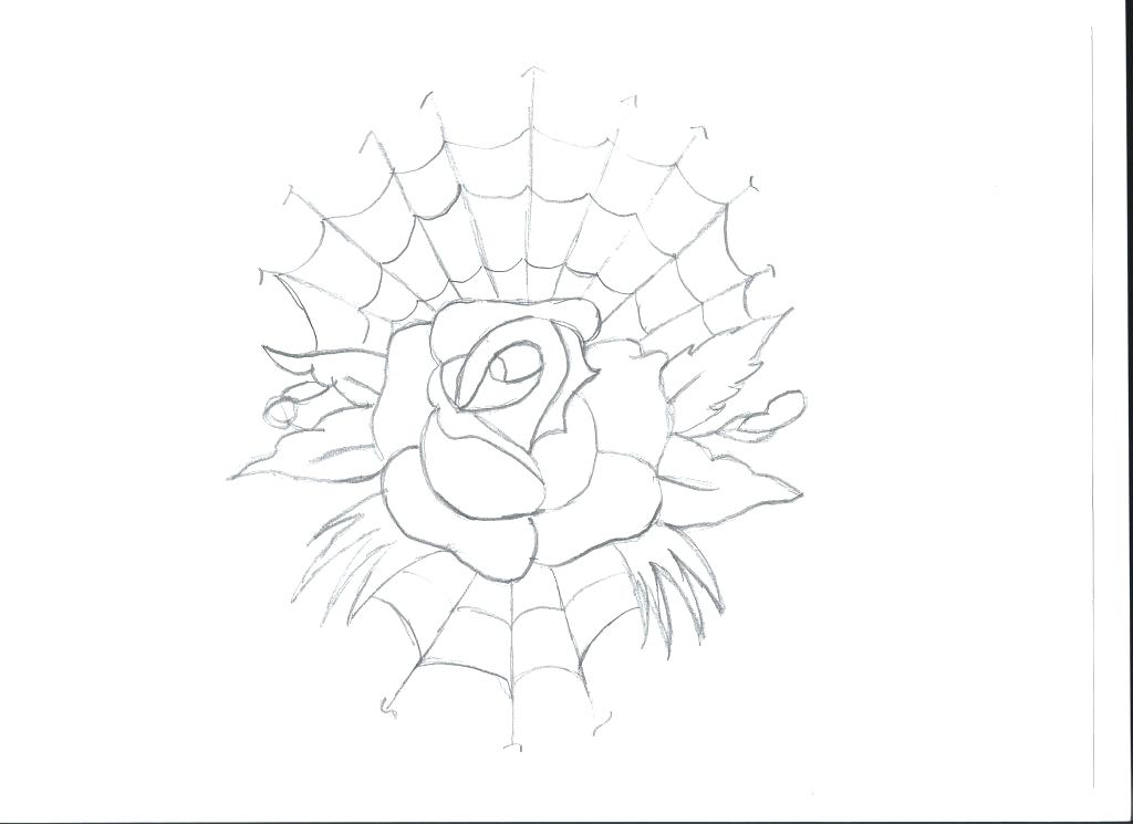 1024x745 Spider Web Coloring Page Spider Web Coloring Page Drawings Drawing