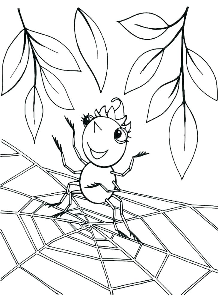 731x1024 Spider Web Coloring Page Spider Web Coloring Pages Spider Web