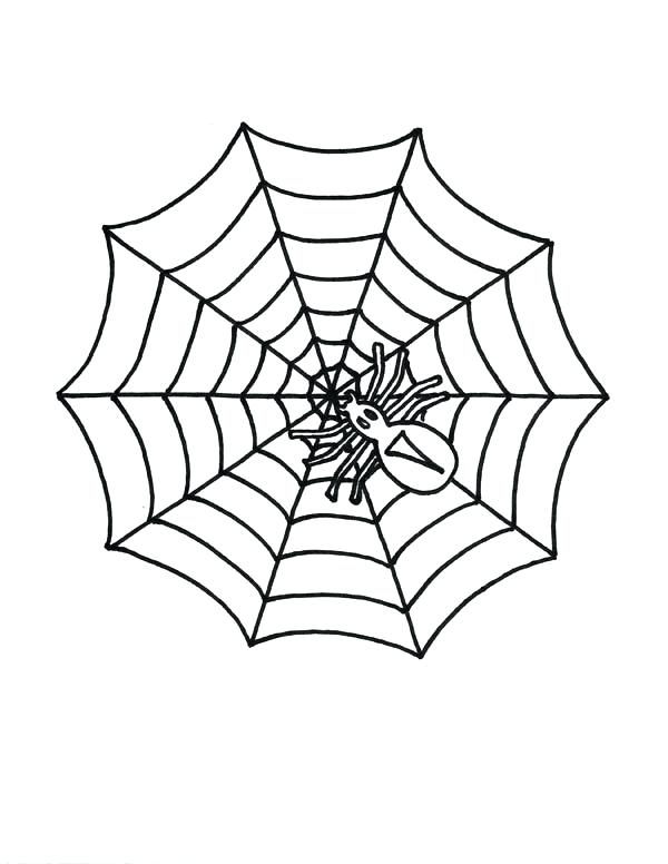 600x776 Spider Web Coloring Page Together With Little Spider On Spider Web