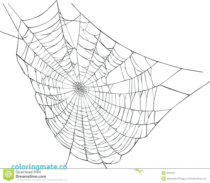 736x641 Spider Web Coloring Page With Spider Web Coloring Page Lovely Best