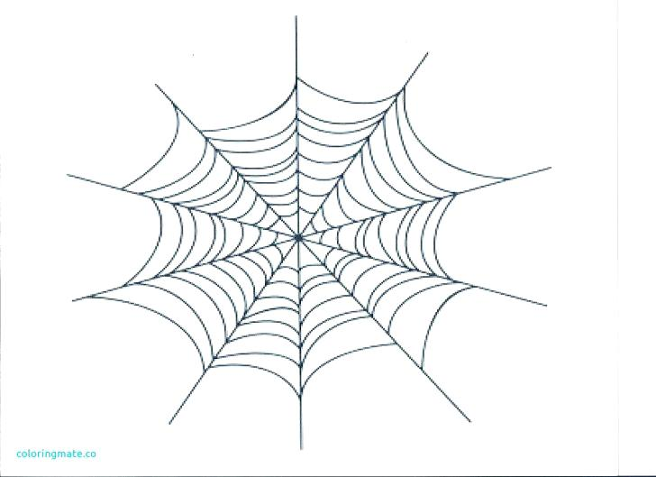728x529 Spider Web Coloring Pages Medium Size Of Er Web Coloring Page Free
