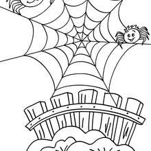 220x220 Spider On Its Web Coloring Pages