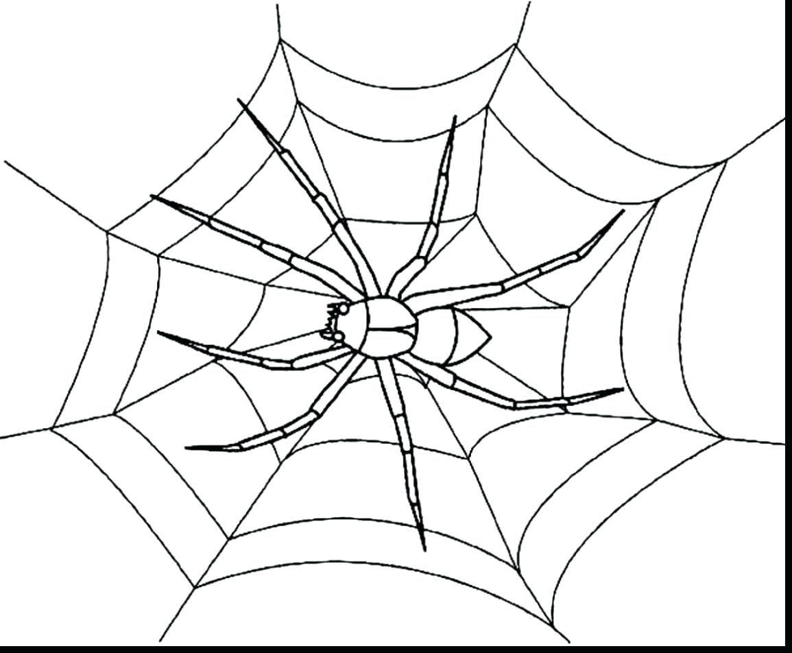 1155x952 Halloween Spider Web Coloring Pages Extraordinary Page Marvelous