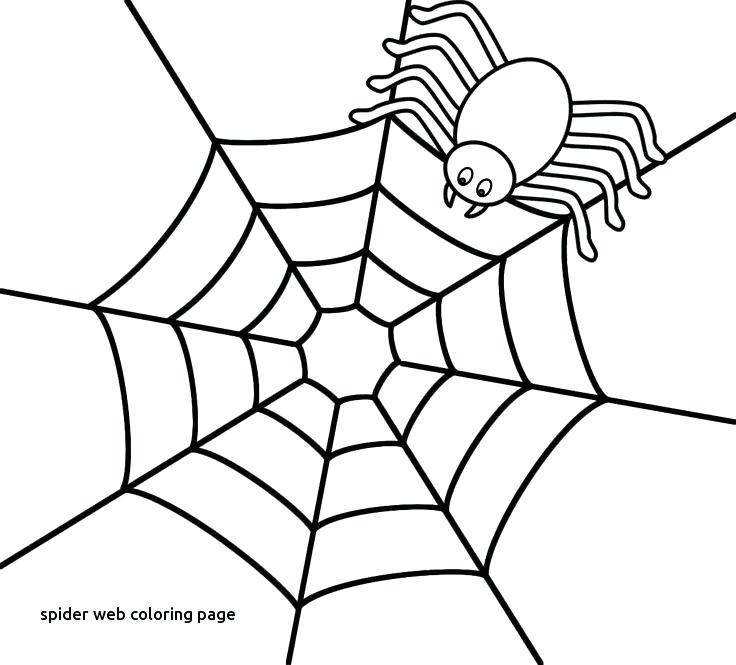 736x665 Spider Web Coloring Page Of Spider Web To Print Template