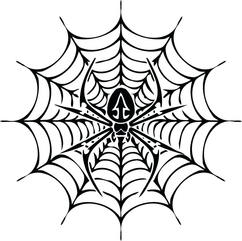 799x795 Spider Web Coloring Page With Spider Web Coloring Page Lovely Best