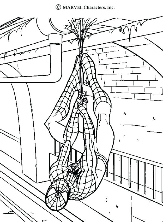 625x850 Spiderman Color Pages Saving A Cat S Webs Coloring Page Super
