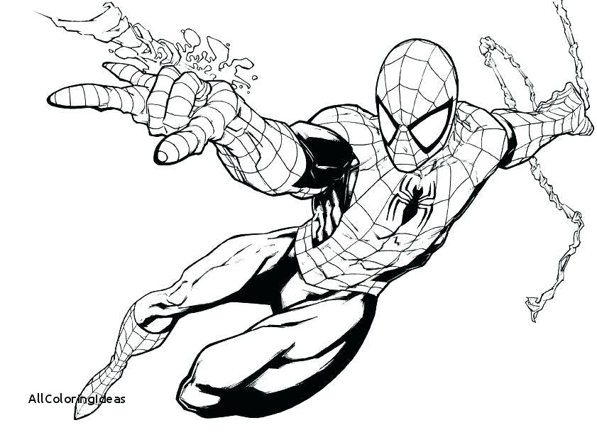 Spiderman Coloring Pages Free At Getdrawings Com Free For Personal