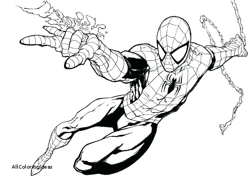 Spiderman Coloring Pages To Print At Getdrawings Com Free For
