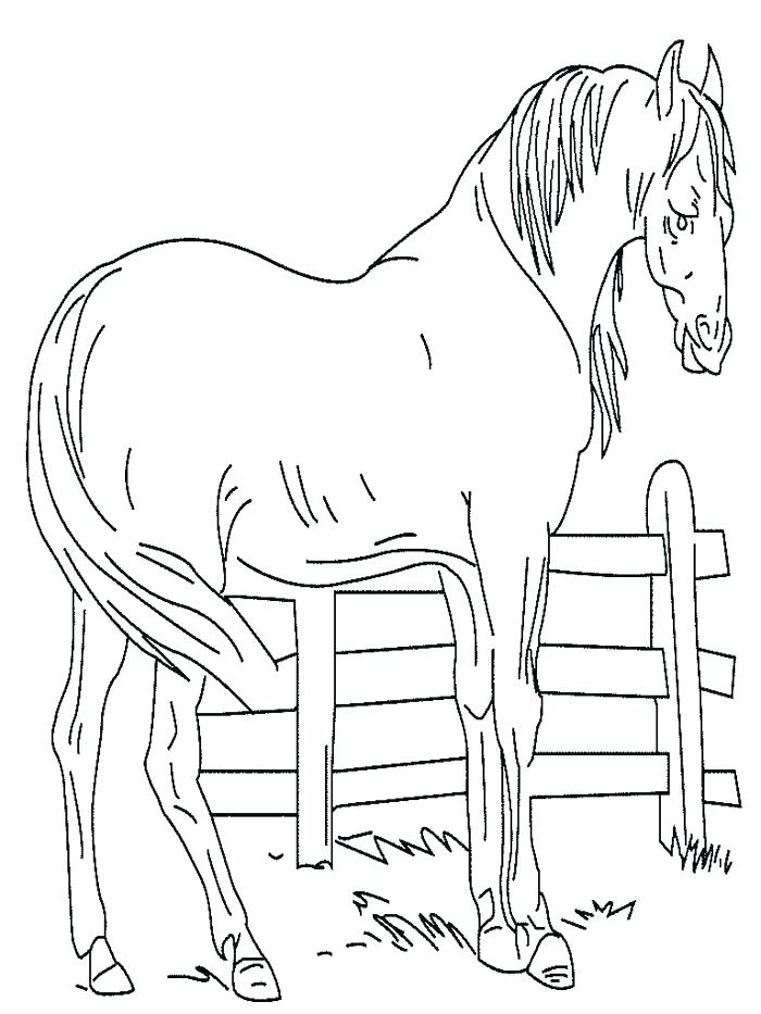 700x933 Mustang Horse Coloring Pages Free Printable Horse Coloring Pages