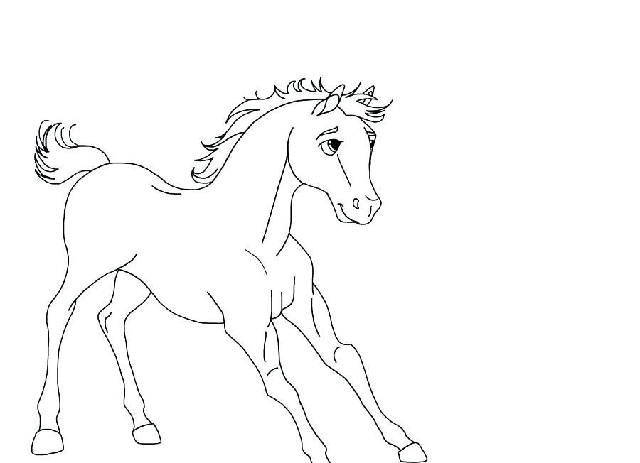 900x652 Fancy Spirit Stallion Of The Coloring Pages Foal Cimarron Sheets