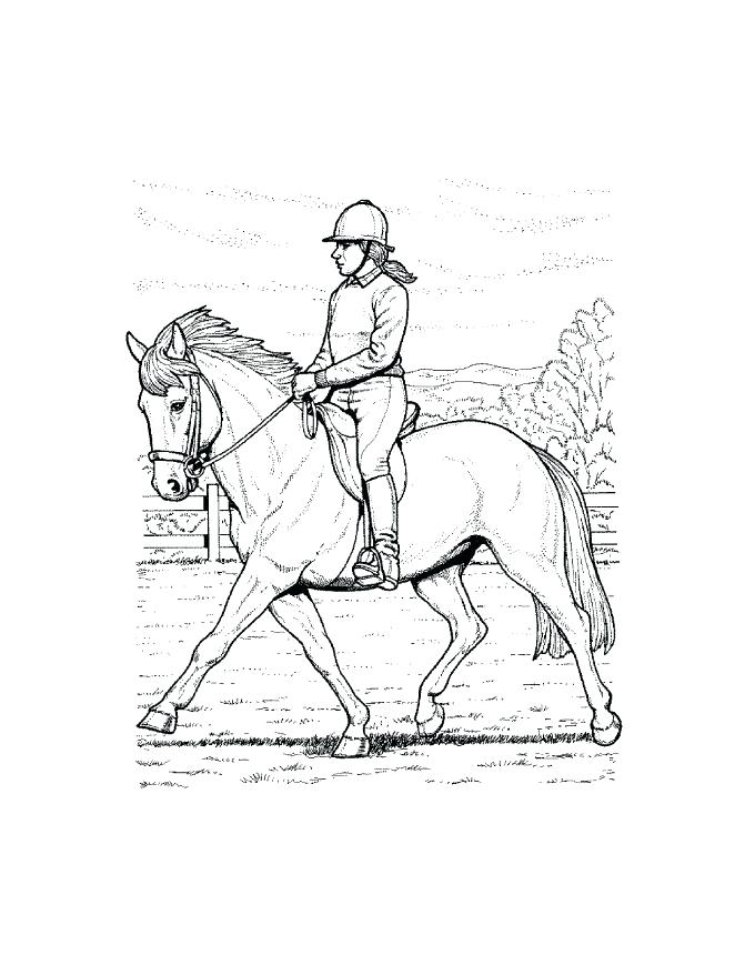 671x869 Free Printable Horse Coloring Pages Spirit Riding Free And Free