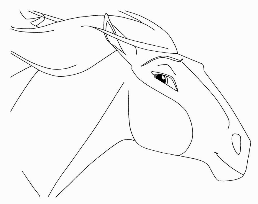 904x715 Spirit Stallion Of The Cimarron Coloring Pages Horses