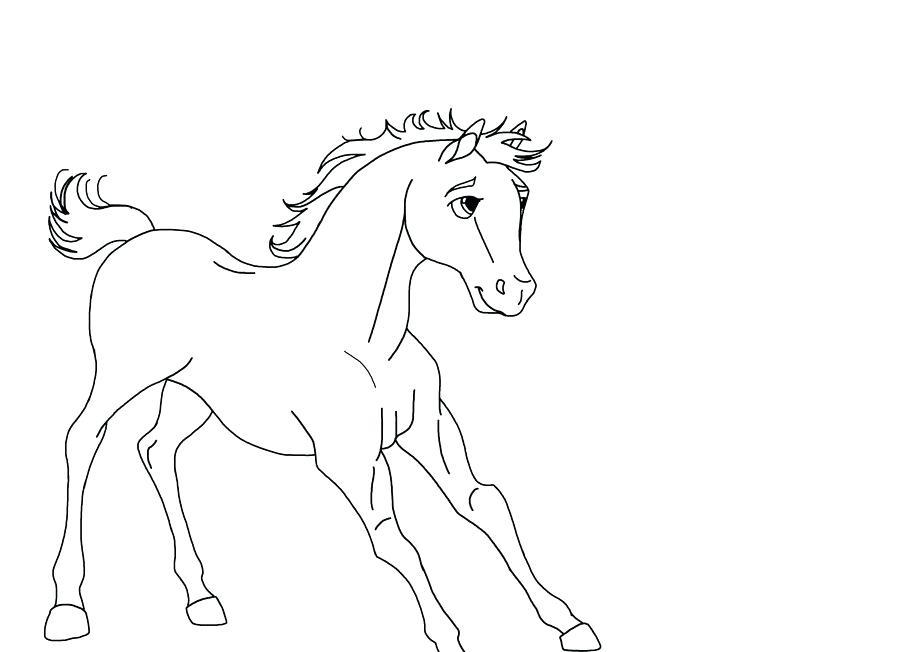 900x652 Spirit Stallion Of The Cimarron Coloring Pages New Spirit Stallion