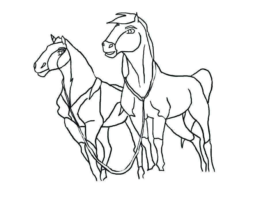 900x690 Stallion Coloring Pages Horse Horse Online Coloring Coloring Page