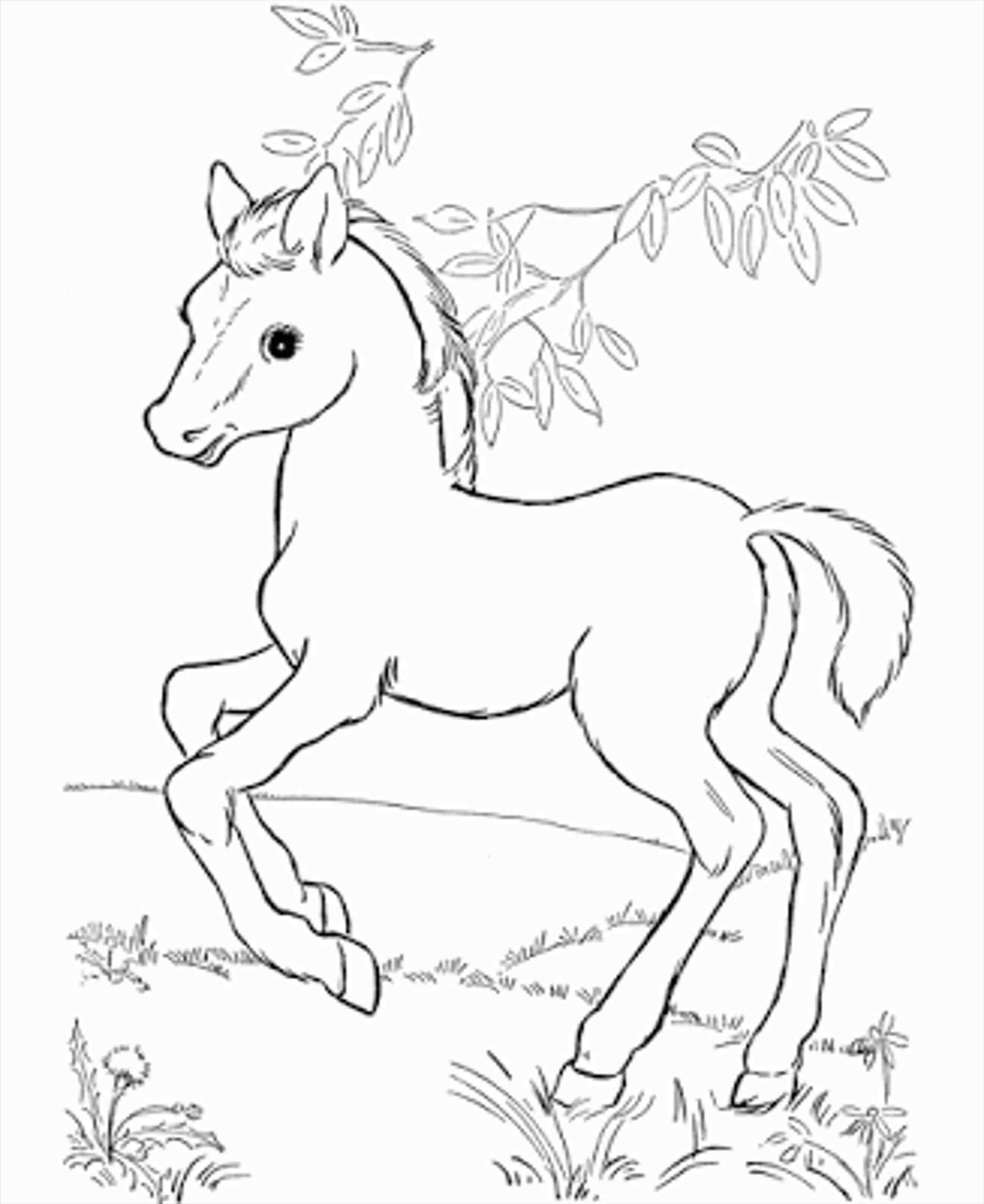 1899x2323 Beautiful Baby Spirit Coloring Pages Ideas Entry Level Resume