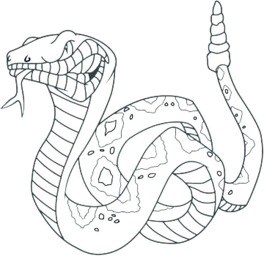 878x853 King Cobra Coloring Pages King Cobra Coloring Pages And The Lion