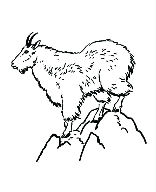 600x736 Mountain Coloring Page Picturesque Mountain Goat Coloring Pictures