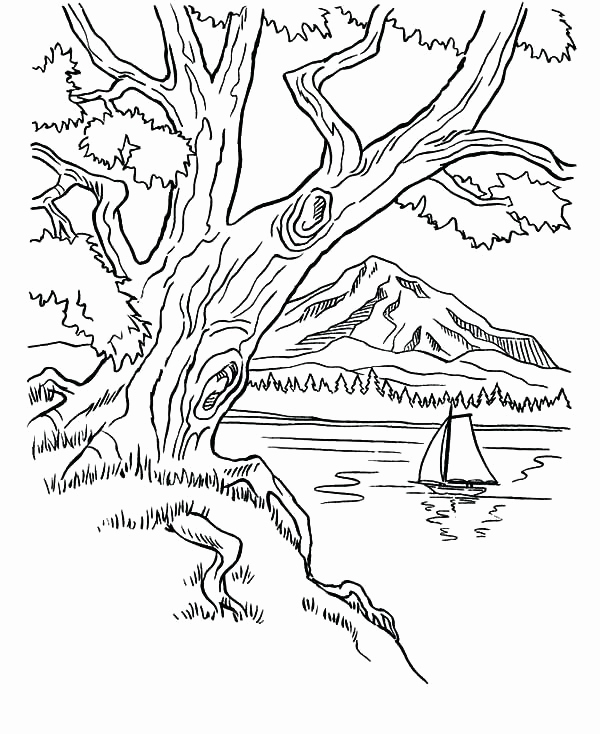 600x734 Mountain Coloring Pages Image Mountain Coloring Pages Arbor Day