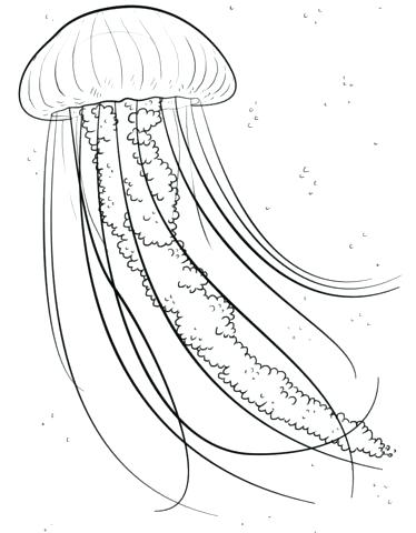 Spongebob Jellyfish Coloring Pages