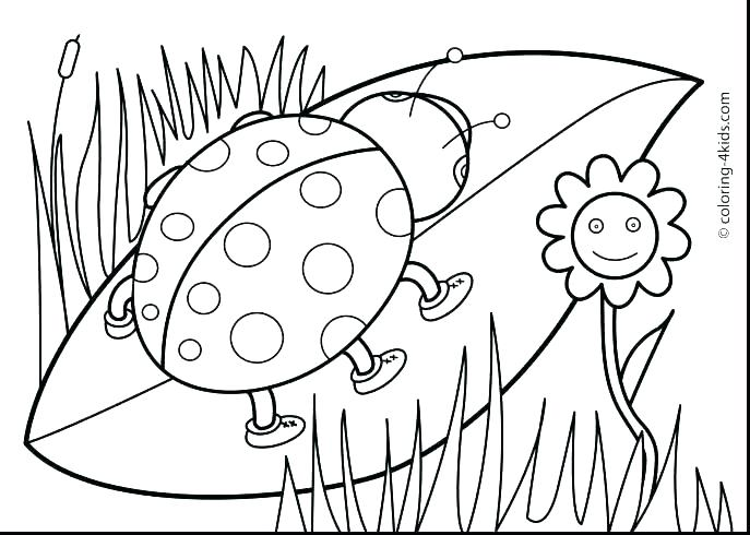 687x490 Spring Animal Coloring Pages Coloring Pages Animals Spring Baby