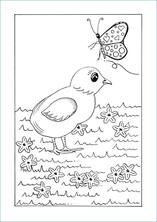 500x707 Spring Animal Coloring Pages Printable Animal Coloring Pages