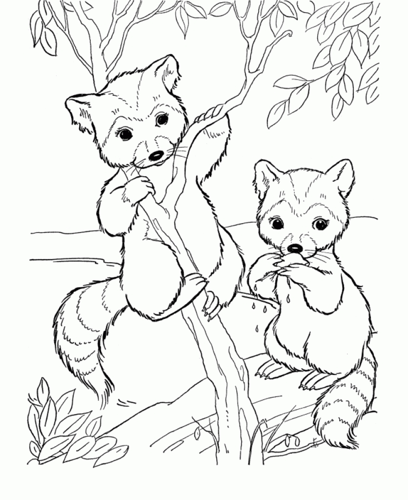 836x1024 Spring Animals Coloring Pages Color Bros