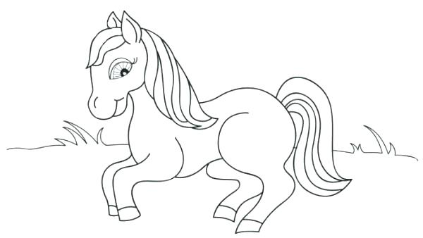 600x338 Animals Coloring Pages Sweet Looking Animals Coloring Pages Baby