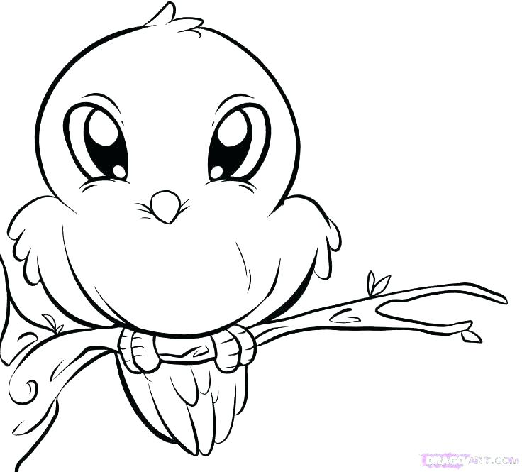 736x665 Cute Bird Coloring Spring Coloring Pages For Preschool Spring Bird